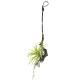エアープランツS (壁掛タイプ) (造花) 高さ52cm 光触媒 (648A40)
