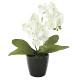 ミニオーキットW (造花) 高さ23cm 光触媒 (706A20)